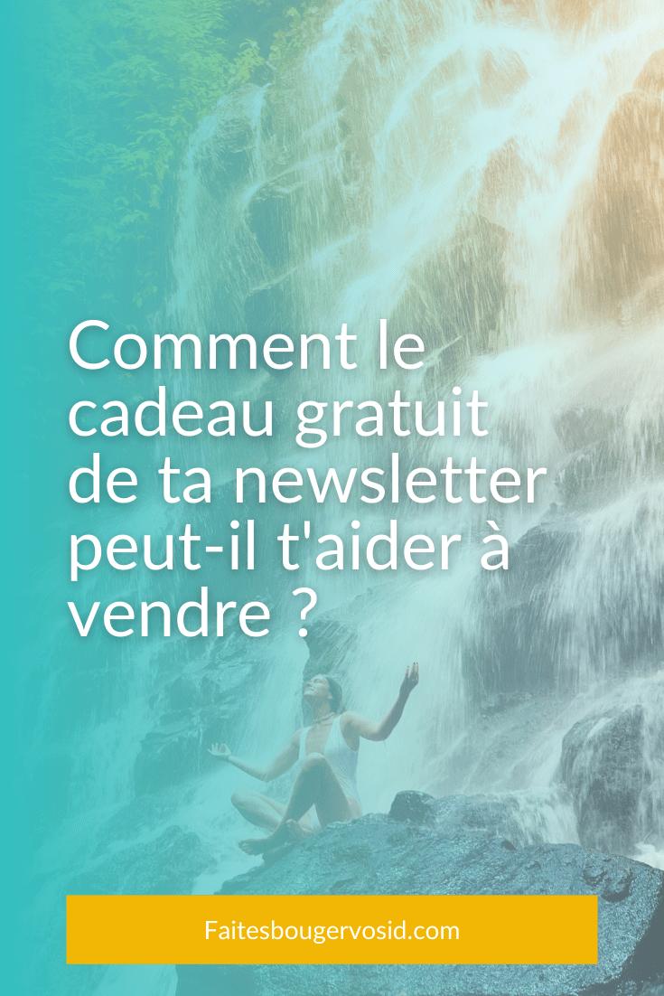 Ton cadeau gratuit te permet d'augmenter le nombre d'abonnés à ta newsletter. C'est également l'occasion de vendre. Voici comment.
